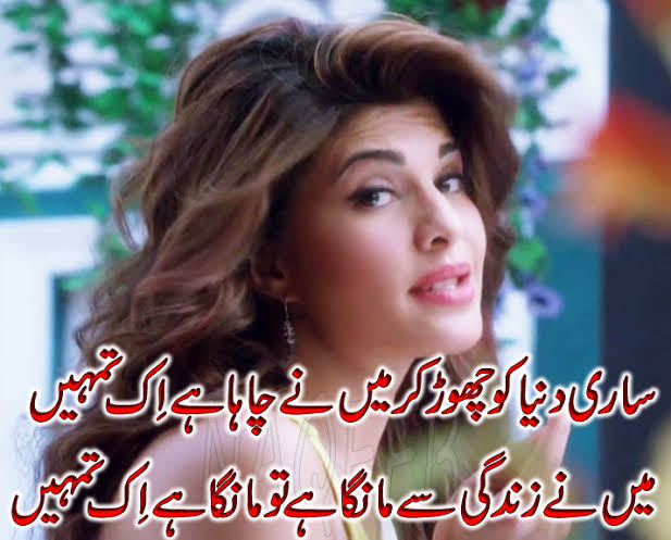 new love shayari urdu