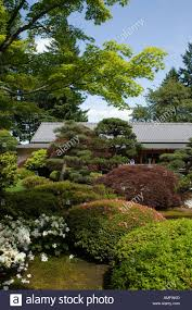 Japanese Garden Plants The Tea House With Manicured Trees Plants At The Portland Japanese