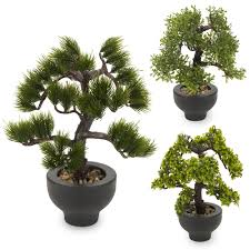 office bonsai. Item Specifics Office Bonsai