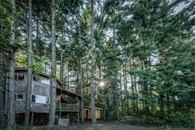 Tree House Photos Luxury Treehouse In Washington State Glamping In Washington