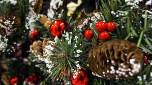 Christmas Tree Decorations | Free Stock Photo | LibreShot