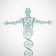 Genome Editing Genome Editing Poses Ethical Problems That We Cannot Ignore Iflscience