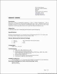 Resume Templates For Experienced It Professionals Luxury Free Best