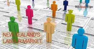 Рынок труда Новой Зеландии nz study trips Рынок труда Новой Зеландии