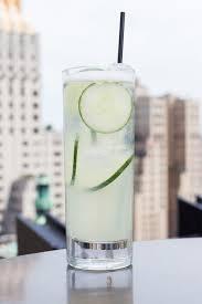 Best 25 Vanilla Vodka Drinks Ideas On Pinterest  Girls Night Party Cocktails Vodka