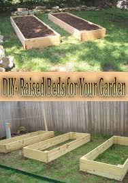 raised garden beds diy raised bed