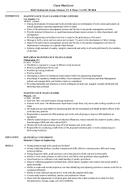 team leader cv examples it team leader resume example templates cv sample pictures hd