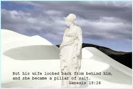 Image result for Genesis 19:26