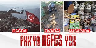 Diyarbakır'da PKK'ya üst üste darbeler