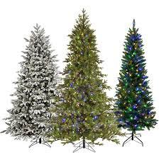 Christmas TreesTypes Of Fir Christmas Trees