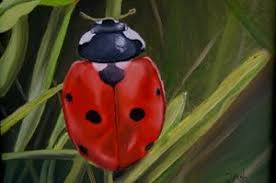 Happy Ladybug - Dianna Fish - Paintings & Prints, Animals, Birds ...