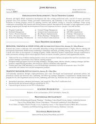 Personal Resume Template And Create My Resume Example Resume Trainer