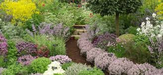 Small Picture Planning a New Herb Garden Part 1