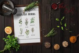Printable Culinary Herb Chart Botanical Herb Print Herb Prints Kitchen Herb Print Herbs