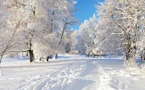 seasons essay essay on winter season
