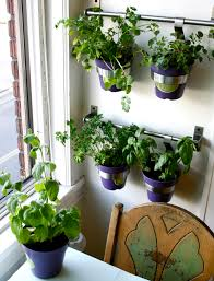 indoor herb garden ideas wall