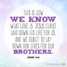 Brotherly Love Quotes Adorable Top 48 Bible Verses About Brotherly Love ChristianQuotes
