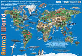 all animals in the world pictures. Brilliant The Animals Of The World  Animal Map For All In The Pictures M