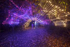Festival Of Lights Irvine 10 Enchanting Sound And Light Shows In Scotland Not To Miss