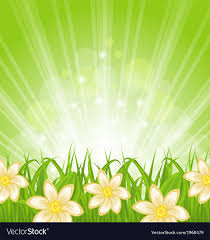 grass and flowers background. Wonderful Flowers Intended Grass And Flowers Background