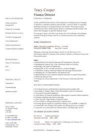 Financial Cv Template Business Administration Cv Templates