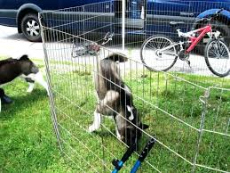 easy dog fence back to best outdoor dog fence ideas home design ideas 2018