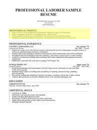 Profile In Resume Example For Student Lovely Profile Example For Resume Resume Professional Profile 11
