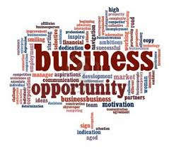 Image result for business opportunity