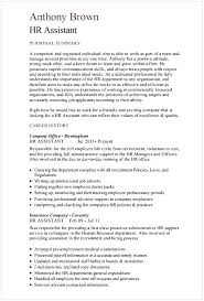 Hr Manager Resume Examples Hr Executive Resume Sample This Is Hr ...