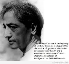 Krishnamurti Quotes Beauteous Jiddu Krishnamurti Quotes