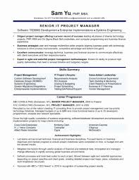 Sales Manager Resume Objective Impressive Fresh Sales Manager Resume Examples Resume Design
