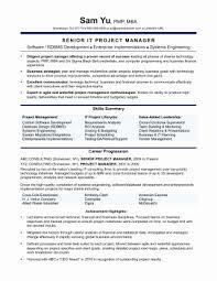 Marketing Manager Resume Objective Extraordinary Fresh Sales Manager Resume Examples Resume Design