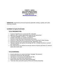 Resume Title Examples Title Resume Resume Title Mentallyright Org