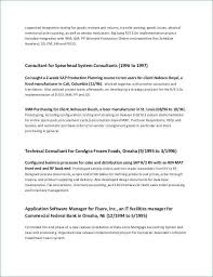 Project Manager Resume Summary Delectable Executive Summary Resume Samples Inspirational Executive Summary For