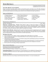 Manager Resume Samples Free Skills Based It Project Pdf Dynamic