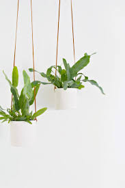 hanging clay planters