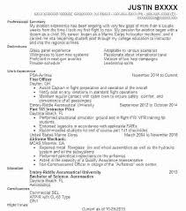 Military Pilot Resume Examples Of Cover Letters For Resumes Examples