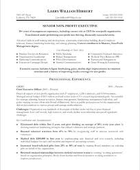 non profit program director resume sample non profit executive a free resume  non profit manager resume