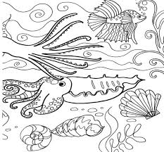 Small Picture 459 Best Amphibians Sea Life Coloring Pages Images On Pinterest