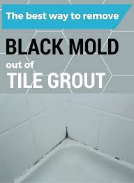 how to get rid of mould in bathroom walls how to get rid of mold on walls in bedroom mold spots on bathroom walls the how to get rid of mold on