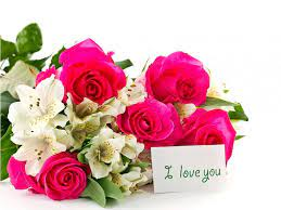 Free images of cute love flowers ...