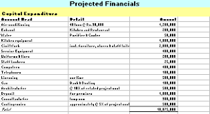 Restaurant Financial Statements Templates Projected Financial Statements Sample Magdalene Project Org
