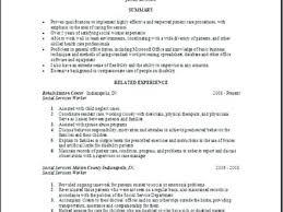 Work Statement Examples Social Work Resume Objective Examples Resume Objective For Social