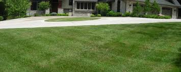 Lawn Care Maintenance Columbia Mo Grizzly Bear Lawn Care