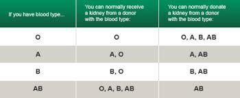 Blood Type Donor Compatibility Chart Conclusive Blood Donor And Recipient Chart Blood Donor Types