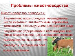 Воздействие животноводства на состояние окружающей среды Влияние животноводства на окружающую среду