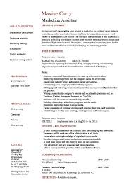 Marketing assistant resume  job description  template  example