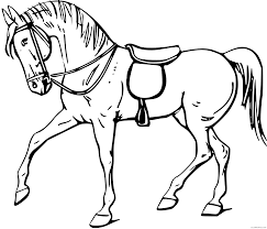Have fun reading facts about race horses, unscramble the words related to race horses, and color in the picture of the horse and jockey! Quarter Horse Coloring Pages Quarter Horse Head Clip Art Printable Coloring4free Coloring4free Com