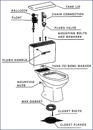 parts of toilet tank. either the freestanding water to be flushed (gravity-fed) or pressure-assist cylinder (pressure-assist). on a gravity-fed toilet tank houses parts of