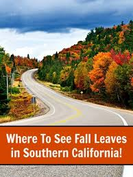 Colors Of California Size Chart Where To See Fall Leaves In Southern California Socal